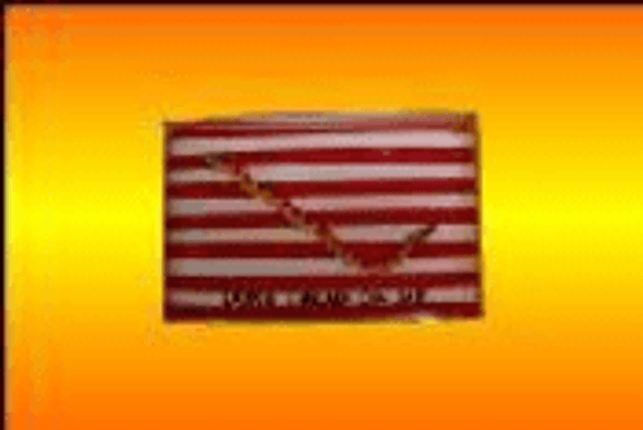 Don't Tread On Me First Naval Jack Pin