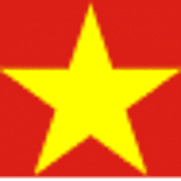 Vietnam Flag 4 X 6 inch on stick