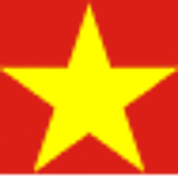 Vietnam Flag 4 X 6 Inch pack of 10