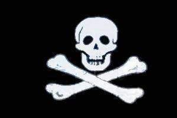Jolly Roger No Patch Pirate Flag 4x6 inch on stick