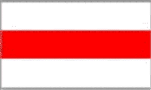Old Belarus 4 x 6 Inch Flag