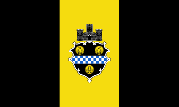 Pittsburgh City Flag 3 X 5 Standard
