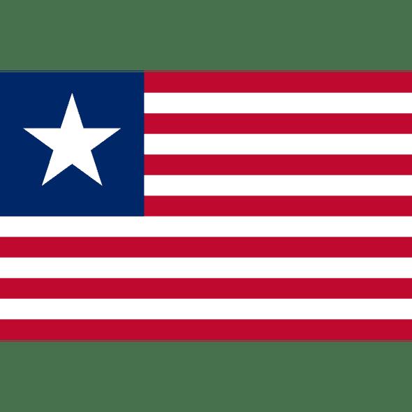 Texas Navy 1836-1839 Flag Custom-Made 2 ft x 3 ft (USA Made)