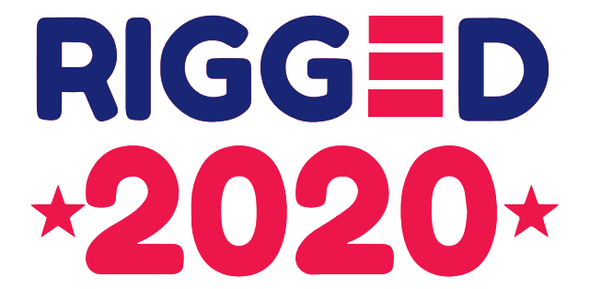 Rigged 2020 Flag - Made in USA