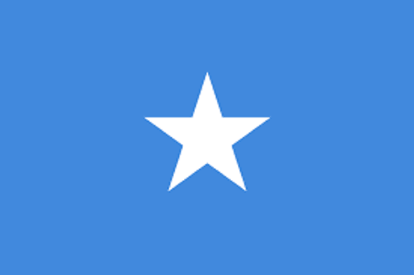 Somalia Flag Nylon Outdoor - Made in USA