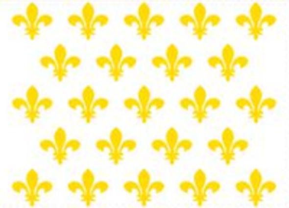 Kingdom of France Fluer De Lis (White) Flag - Rough Tex