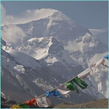 Uncommon Scents Himalaya Perfume Essence - 1 oz roll-top