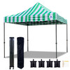 10'x10' D Model Green Stripe - Pop Up Canopy Tent EZ  Instant Shelter w Wheel Bag + Sand Bags