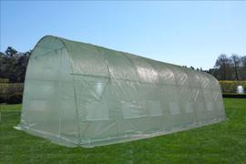 Greenhouse 26'x12' - Walk In Nursery