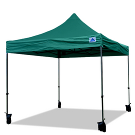 10'x10' D/S Model Forest Green - Pop Up Canopy Tent EZ  Instant Shelter w Wheel Bag + Sand Bags + 4 Walls