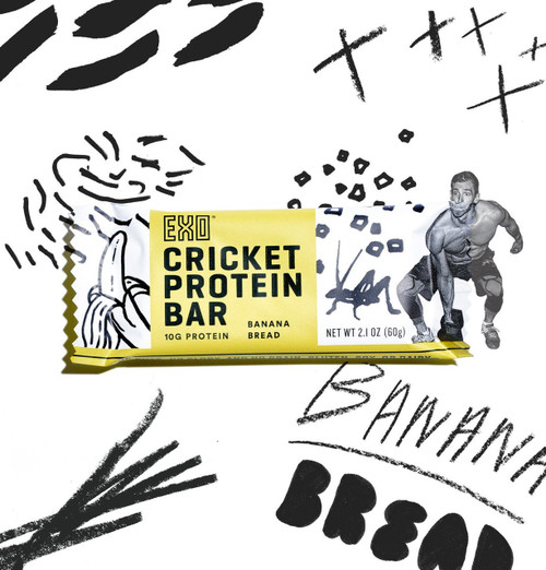 EXO Cricket Protein Bars Banana Bread Vanilla 12 Bars www.battleboxuk.com