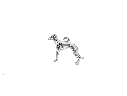 Dog J Charm | 5 Pieces