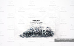Espar / Eberspacher screws kit 252069800700