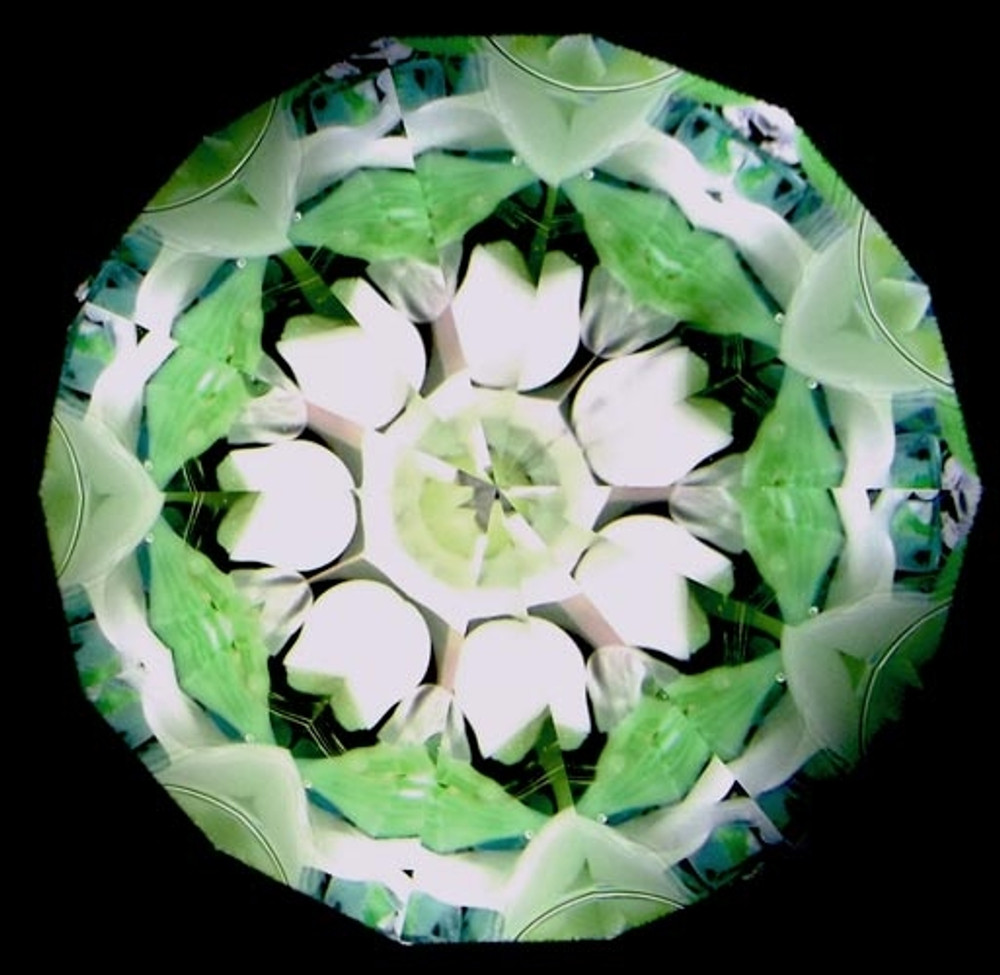 Flower Scope