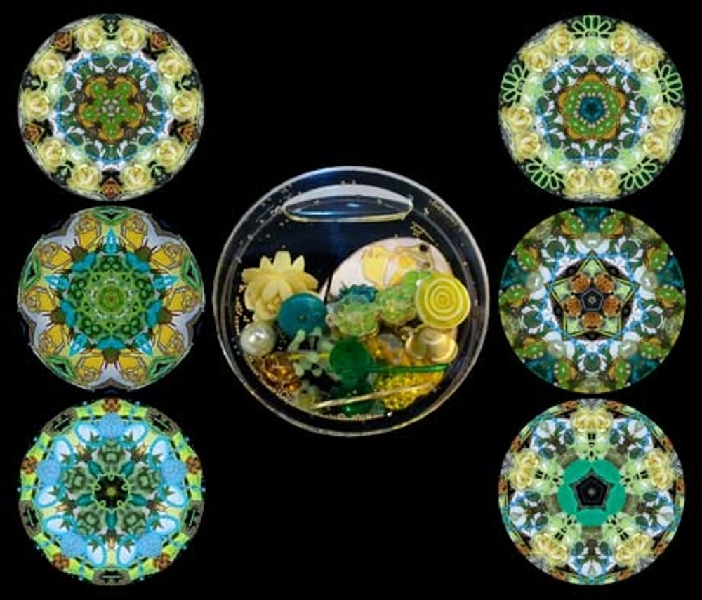 Yellow Rose Interchangeable Cell