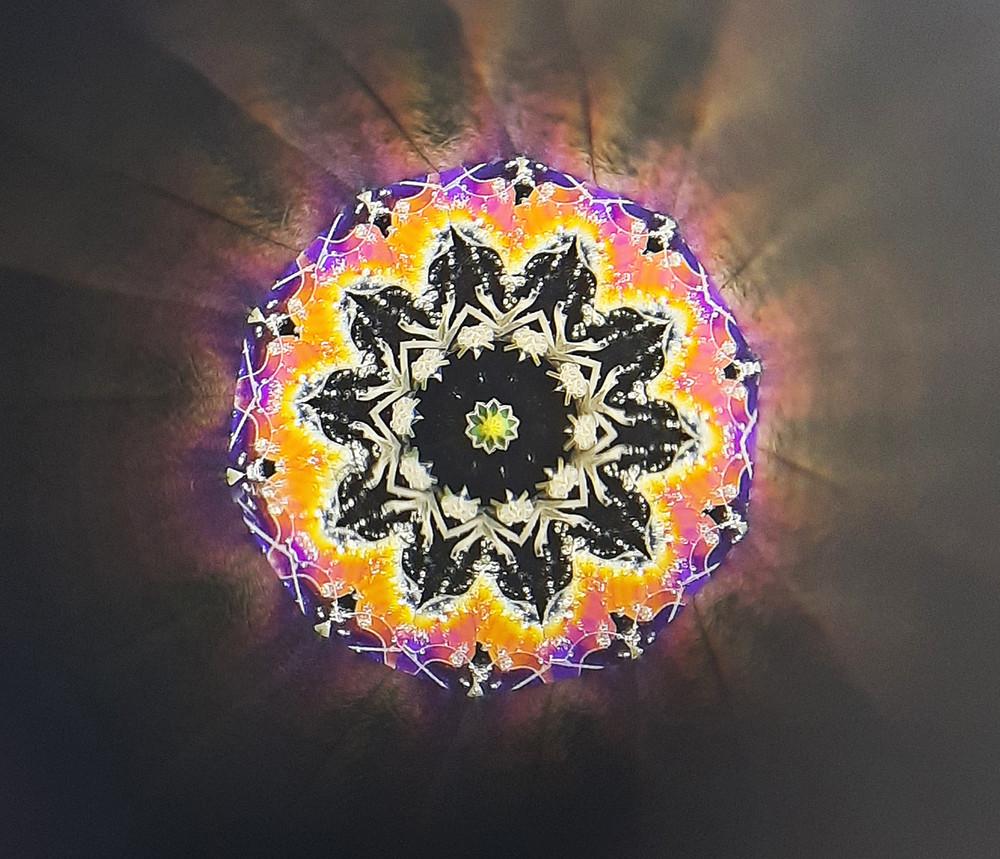 Mandala Polarized 2