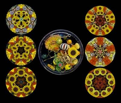 Sunflower Interchangeable Cell