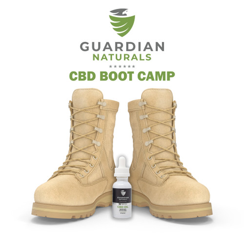 CBD Boot Camp Downloadable Book
