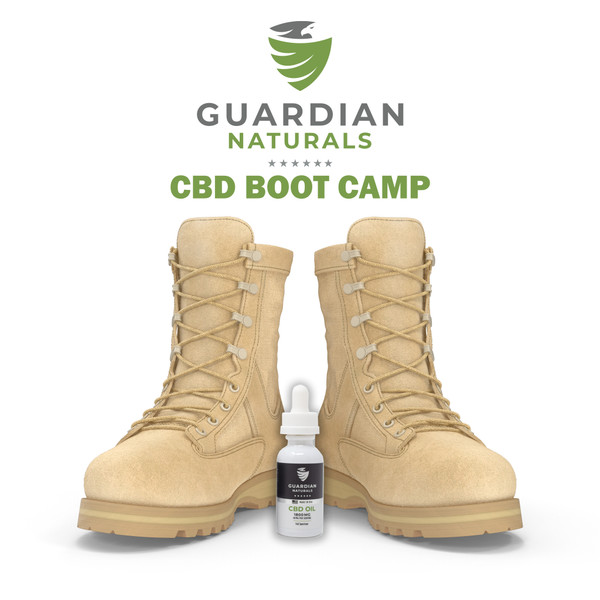 CBD Boot Camp Downloadable Book