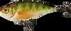 "Live Target Yellow Perch Rattlebait 2"""