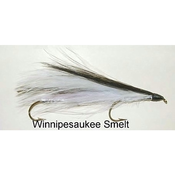 Streamer Fly -  Winnipesauke smelt