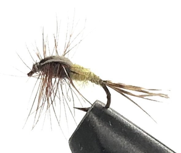 10 Flies -  Nymph Monarch Brown Weighted on a Bronze 14 Mustad Hook