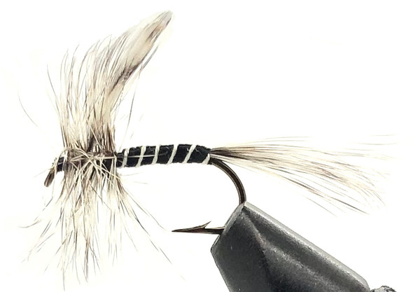 10 Flies -  Dry Mosquito on a Bronze 8 Mustad Hook