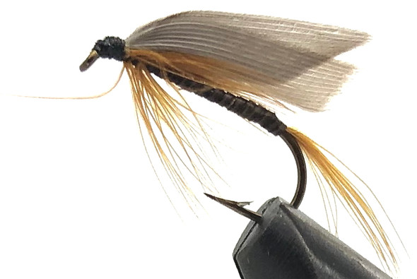 10 Flies -  Wet Ginger Quill on a Bronze 8 Mustad Hook