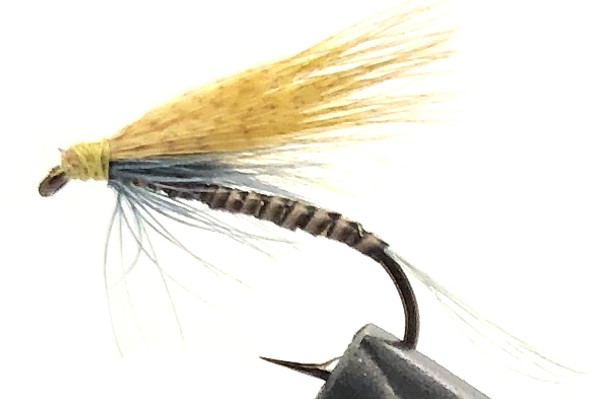 10 Flies -  Wet Blue Ginger on a Bronze 10 Mustad Hook