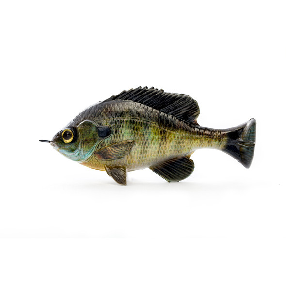 Savage Gear - Pulse Tail Bluegill Loosebody