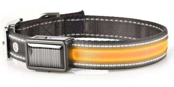 Brite-Strike Lighted Dog Collar - Medium