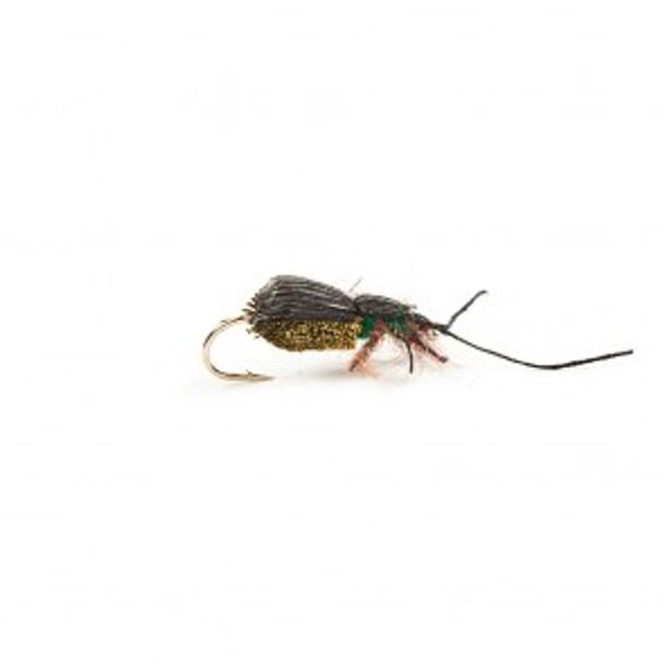 Olive Beetle Popper