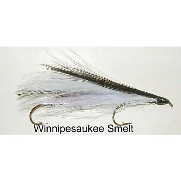 Streamer Fly -  Winnipesauke smelt
