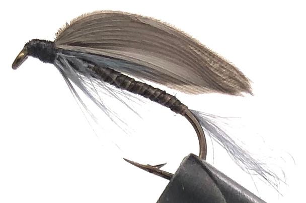 10 Flies -  Wet Blue Quill on a Bronze 8 Mustad Hook - 0306
