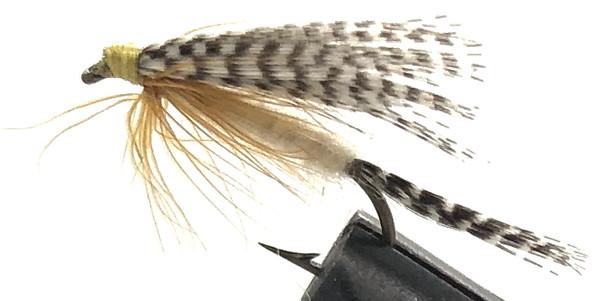 10 Flies -  Wet Light Cahill on a Bronze 8 Mustad Hook