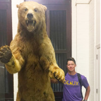 That's a big bear!