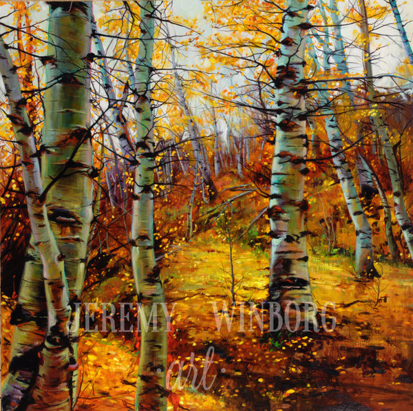 Autumn Aspens Giclée Print (square)