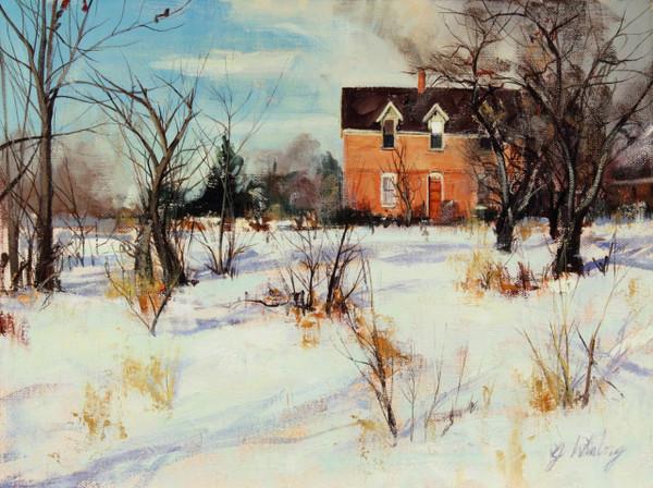 house among the snow