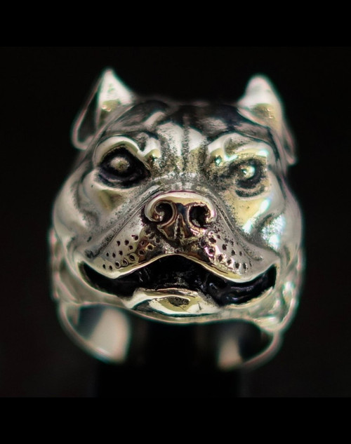 Sterling silver ring Pit Bull Terrier Dog high polished and antiqued