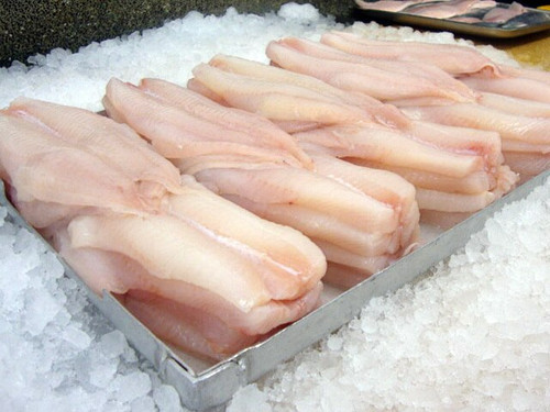 Fresh Scottish Haddock