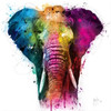 Africa Pop by Patrice Murciano - Extra Large