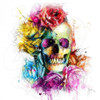 Collector Dead or Alive by Patrice Murciano - Extra Large