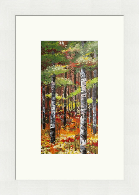 Silver Birches and Poppies by Daniel Campbell