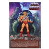 Masters of the Universe Club Grayskull He-Man Action Figure