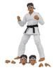 Karate Kid Daniel Larusso 6-Inch Scale Action Figure