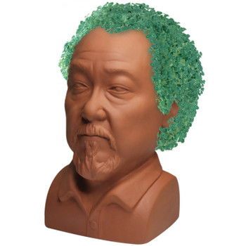 Karate Kid Mr. Miyagi Chia Pet
