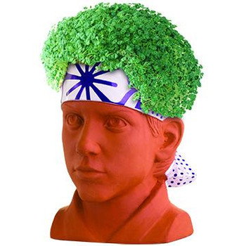 Karate Kid Daniel Chia Pet