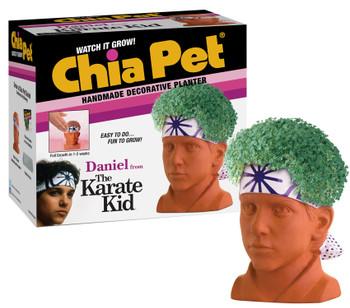 Karate Kid Daniel Chia Pet