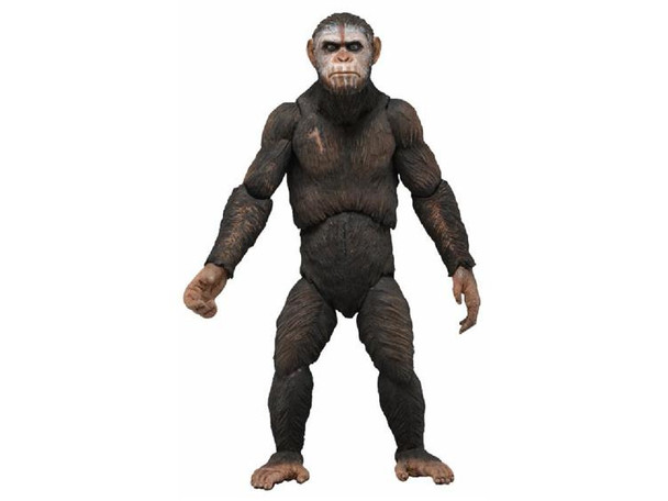 Dawn of the Planet of the Apes Series 1 Caesar Action Figure