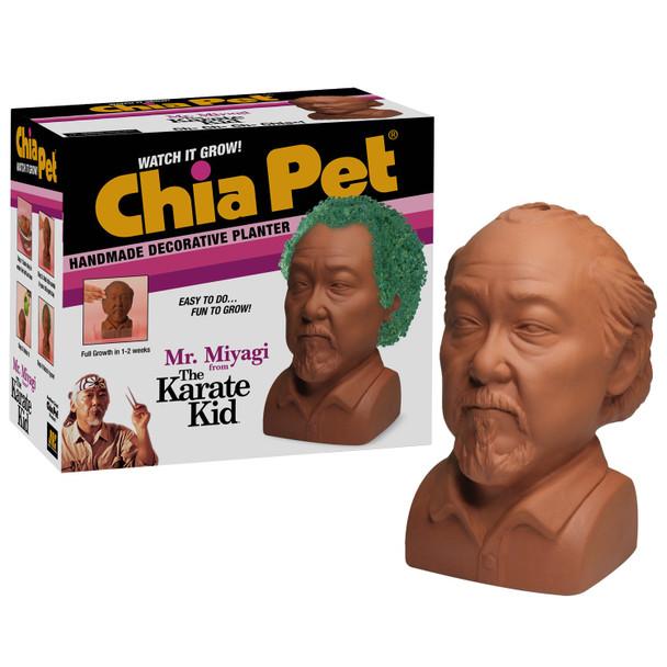 Karate Kid Mr. Miyagi Chia Pet